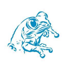 Vektorillustration. Grafische Darstellung eines Frosches
