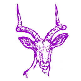 Vektorillustration. Grafische Darstellung einer Antilope